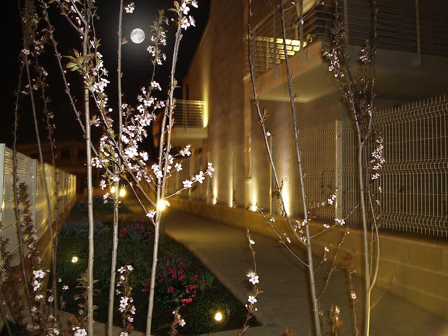 Esterno vialetto pedonale sera